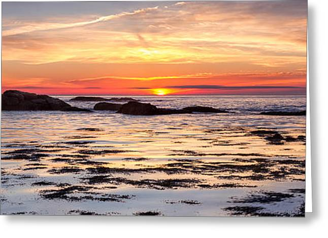 Sunrise Silhouettes Odiorne Point Greeting Card