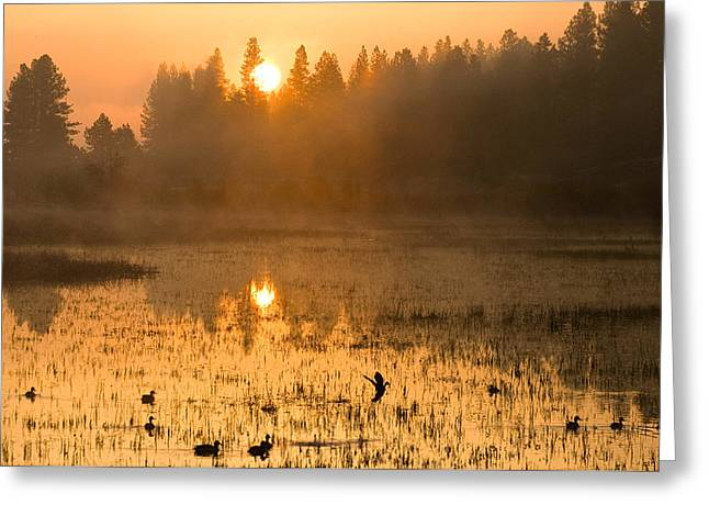 Greeting Card featuring the photograph Sunrise Take Off by Judi Baker