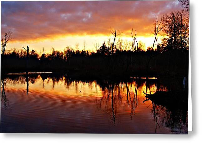 Sunrise Thanksgiving Morning Greeting Card by Joe Faherty