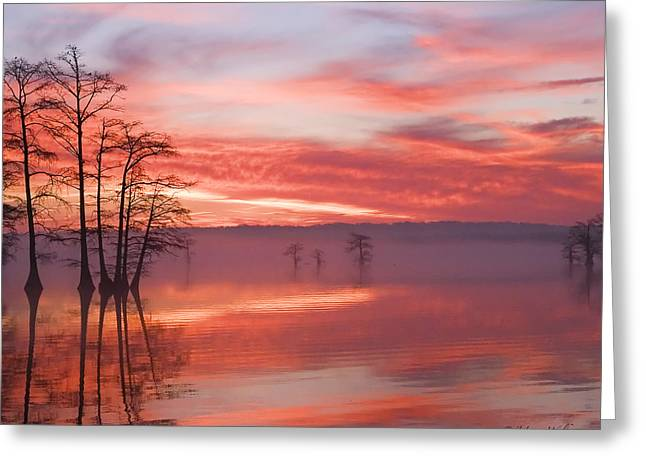 Sunrise Through The Fog Greeting Card by J Larry Walker