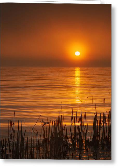 Sunrise Through The Fog Greeting Card