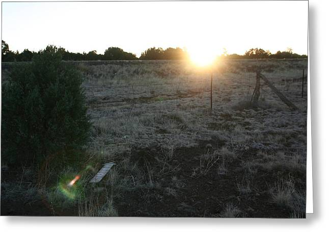 Greeting Card featuring the photograph Sunrize by David S Reynolds