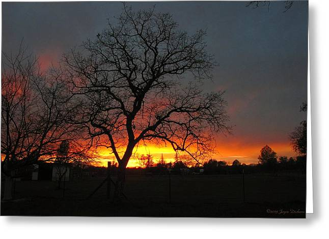 Sunset 02 18 13 Greeting Card by Joyce Dickens