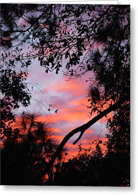 Sunset 16 Greeting Card
