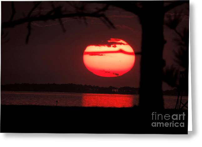 Sunset 3 Greeting Card by Stephanie Kendall