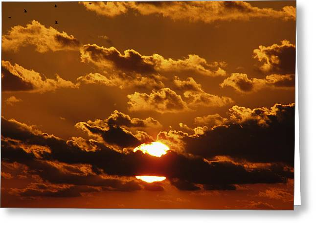Sunset 5 Greeting Card by Bob Slitzan