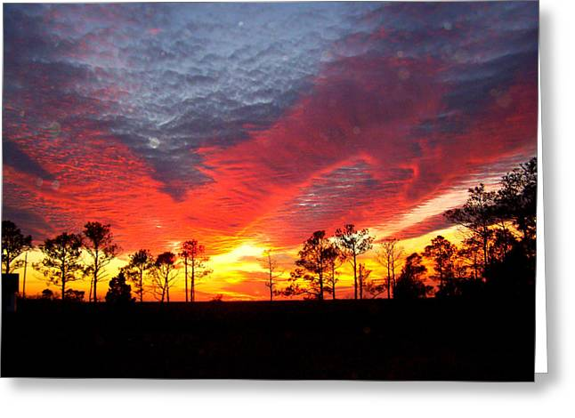 Sunset 5 Greeting Card by Stephanie Kendall