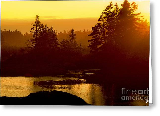 Sunset Greeting Card by Alana Ranney