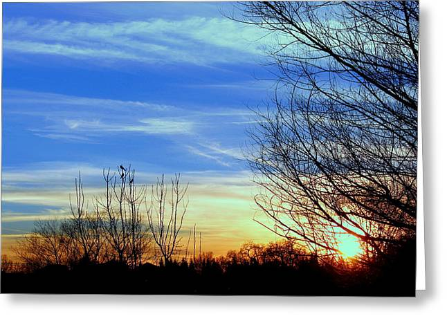 Sunset And 3 Birds Greeting Card