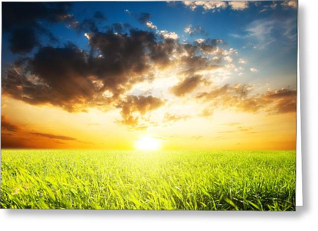 Sunset And Field Of Grass Greeting Card by Boon Mee