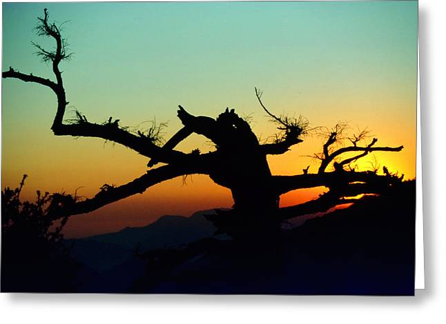 Sunset Angeles National Forest Greeting Card
