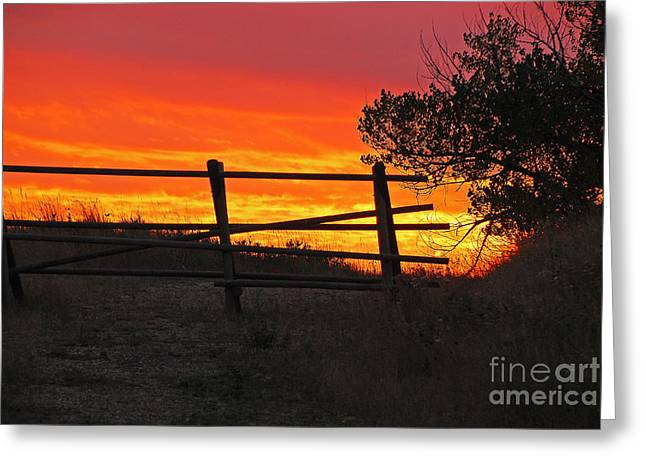 Greeting Card featuring the photograph Sunset At Bear Butte by Mary Carol Story