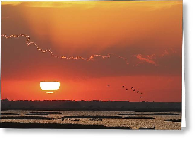 Sunset At Cheyenne Bottoms Greeting Card by Rob Graham