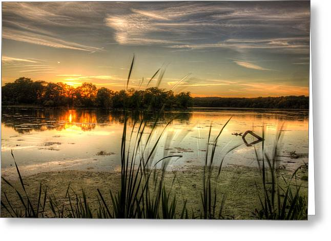 Sunset At Cootes Bay Greeting Card by Craig Brown