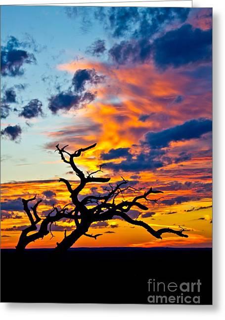 Sunset At Enchanted Rock Greeting Card