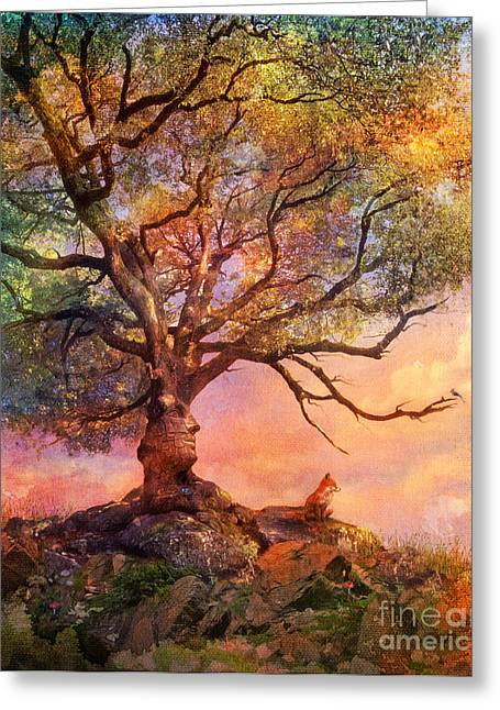 Sunset At Fox Mountain Greeting Card by Aimee Stewart