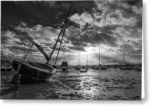 Sunset At Low Tide Greeting Card by Fred Gramoso