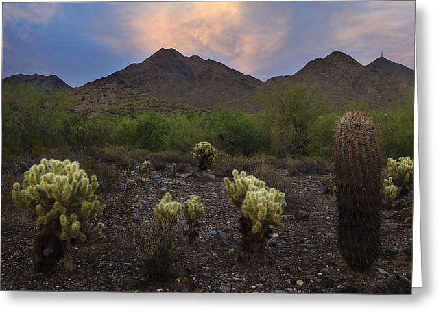 Sunset At Mcdowell Mountains In Scottsdale Az Usa Greeting Card