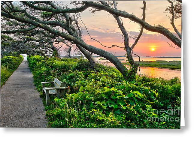 Sunset At Pea Island Wildlife Refuge Outer Banks I Greeting Card by Dan Carmichael