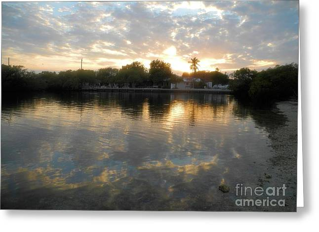 Sunset At Pennekamp Greeting Card by Adam Jewell