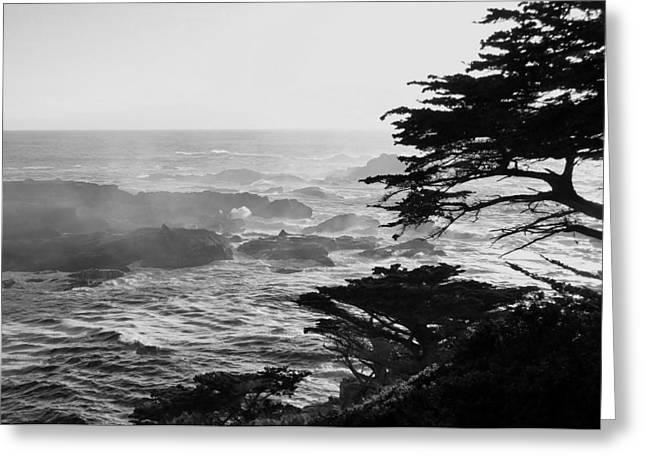 Sunset At Point Lobos Greeting Card