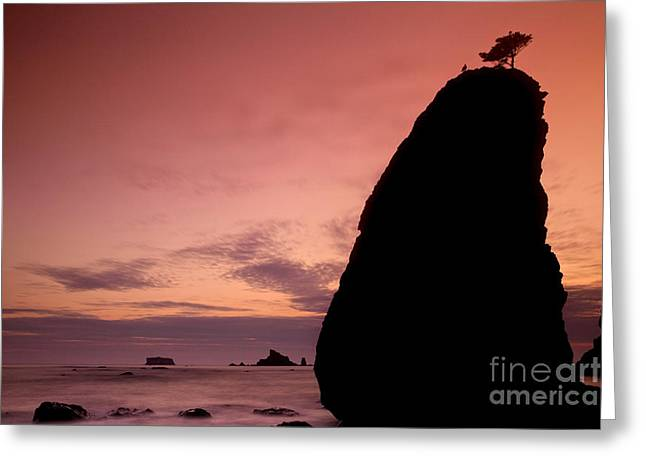 Sunset At Rialto Beach Greeting Card by Keith Kapple