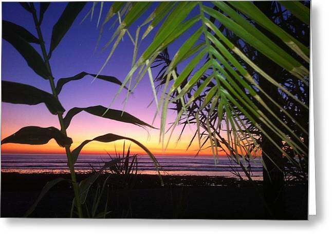 Sunset At Sano Onofre Greeting Card
