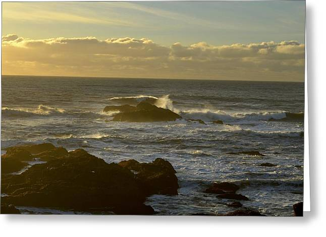 Sunset At Santa Cruz Greeting Card by Alex King