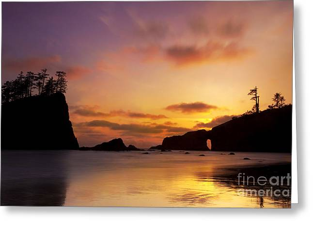 Sunset At Second Beach Greeting Card by Keith Kapple