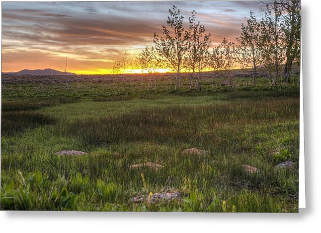 Sunset At Sunflower Flats Greeting Card by Jenessa Rahn