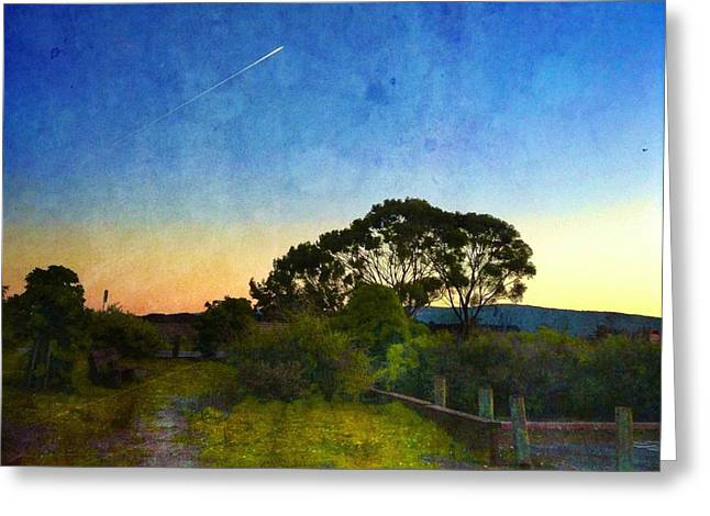 Sunset At The Baylands Greeting Card