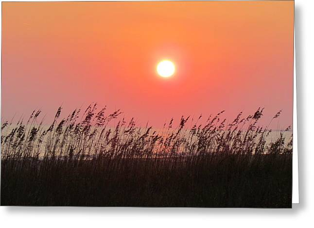 Greeting Card featuring the photograph Sunset At The Beach by Cynthia Guinn