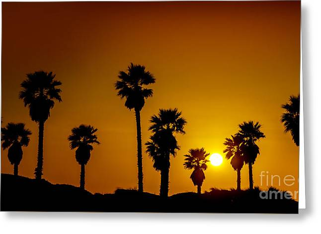 Sunset At The Beach Large Canvas Art, Canvas Print, Large Art, Large Wall Decor, Home Decor Greeting Card