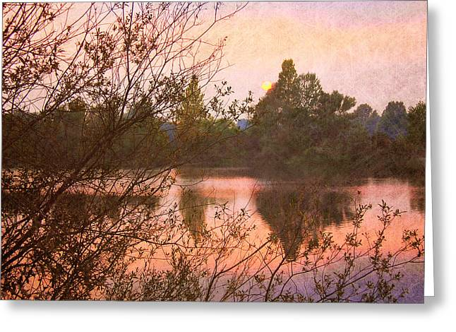 Sunset At The Lake Greeting Card by Angela Bruno