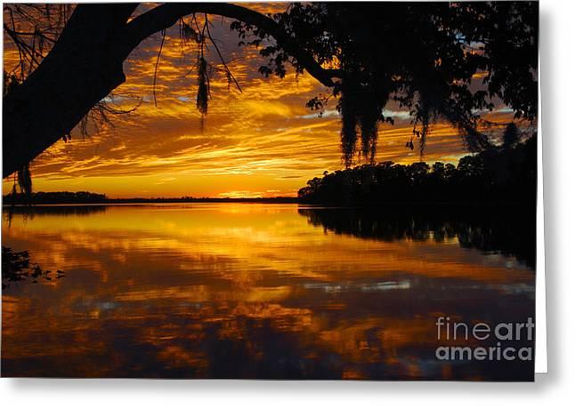 Sunset At The Lake Greeting Card by Rick Mann