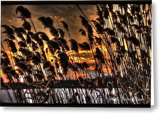 Greeting Card featuring the photograph Sunset At The Pond 5 by Michaela Preston