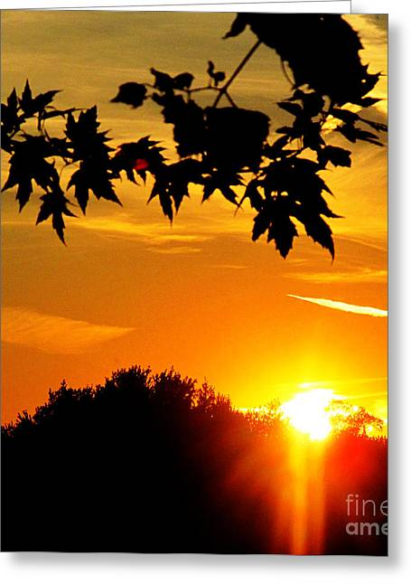 sunset AUSTIN Greeting Card by Tina M Wenger