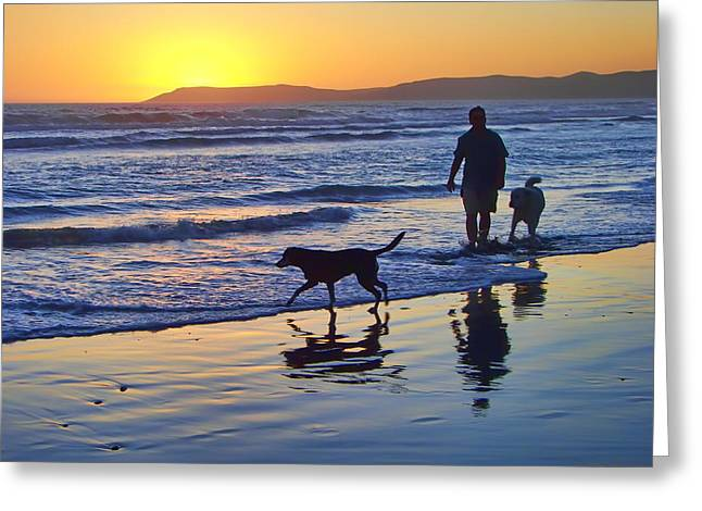 Sunset Beach Stroll - Man And Dogs Greeting Card