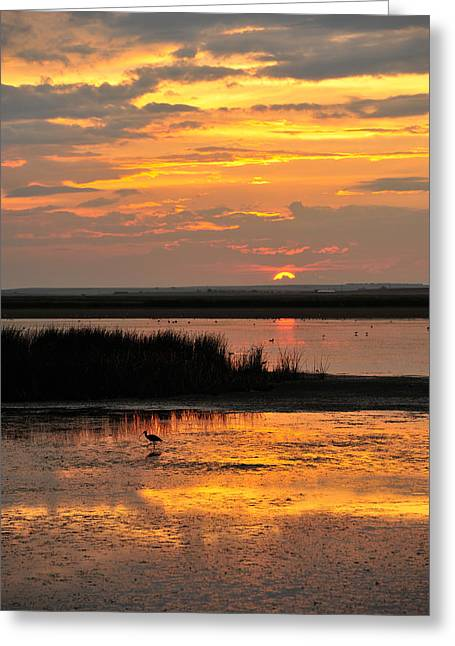 Sunset Beauty Greeting Card by Birches Photography