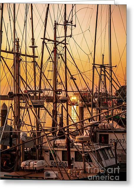 Sunset Boat Masts At Dock Morro Bay Marina Fine Art Photography Print Sale Greeting Card