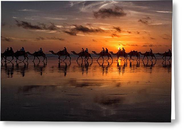 Sunset Camel Safari Greeting Card