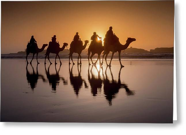 Sunset Camel Trek On The Beach Greeting Card by Charles Bowman
