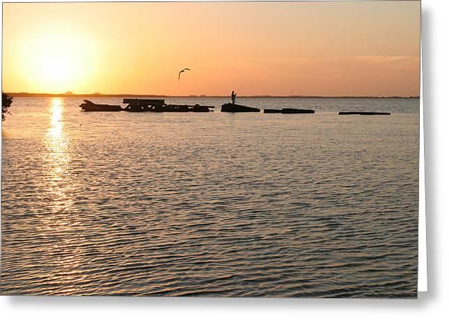 Sunset Fish Greeting Card