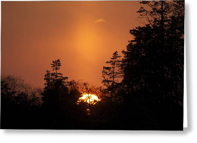 Sunset Flare Greeting Card