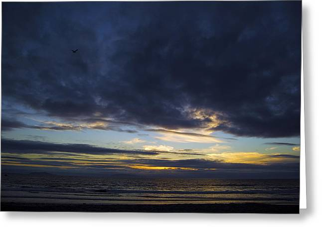 Sunset Flight Greeting Card by Mitch Boyce