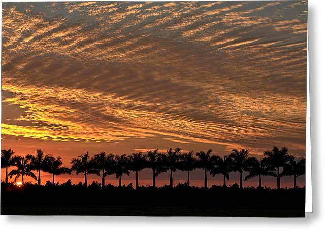 Sunset Florida Greeting Card