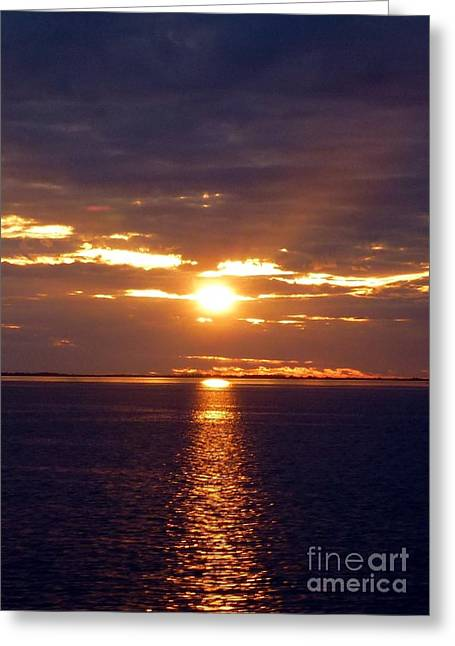 Sunset From Peace River Bridge Greeting Card by Barbie Corbett-Newmin