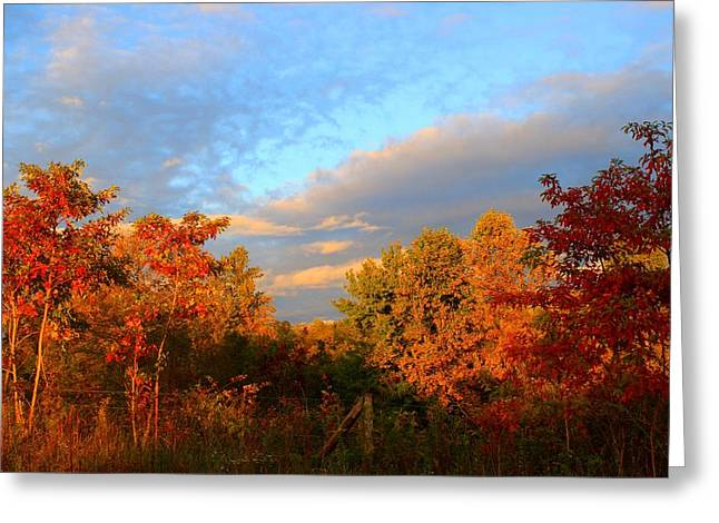 Greeting Card featuring the photograph Sunset Glow by Kathryn Meyer