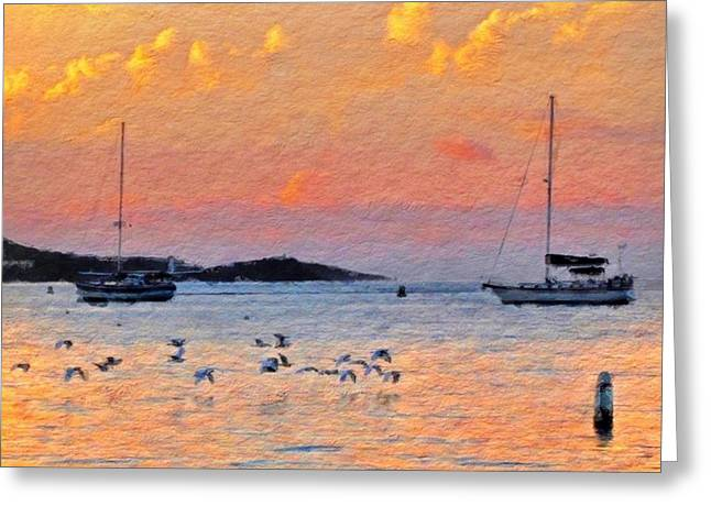 Sunset Harbor With Birds - Square Greeting Card