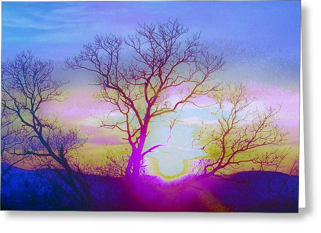 sunset I Greeting Card by Shirley Moravec